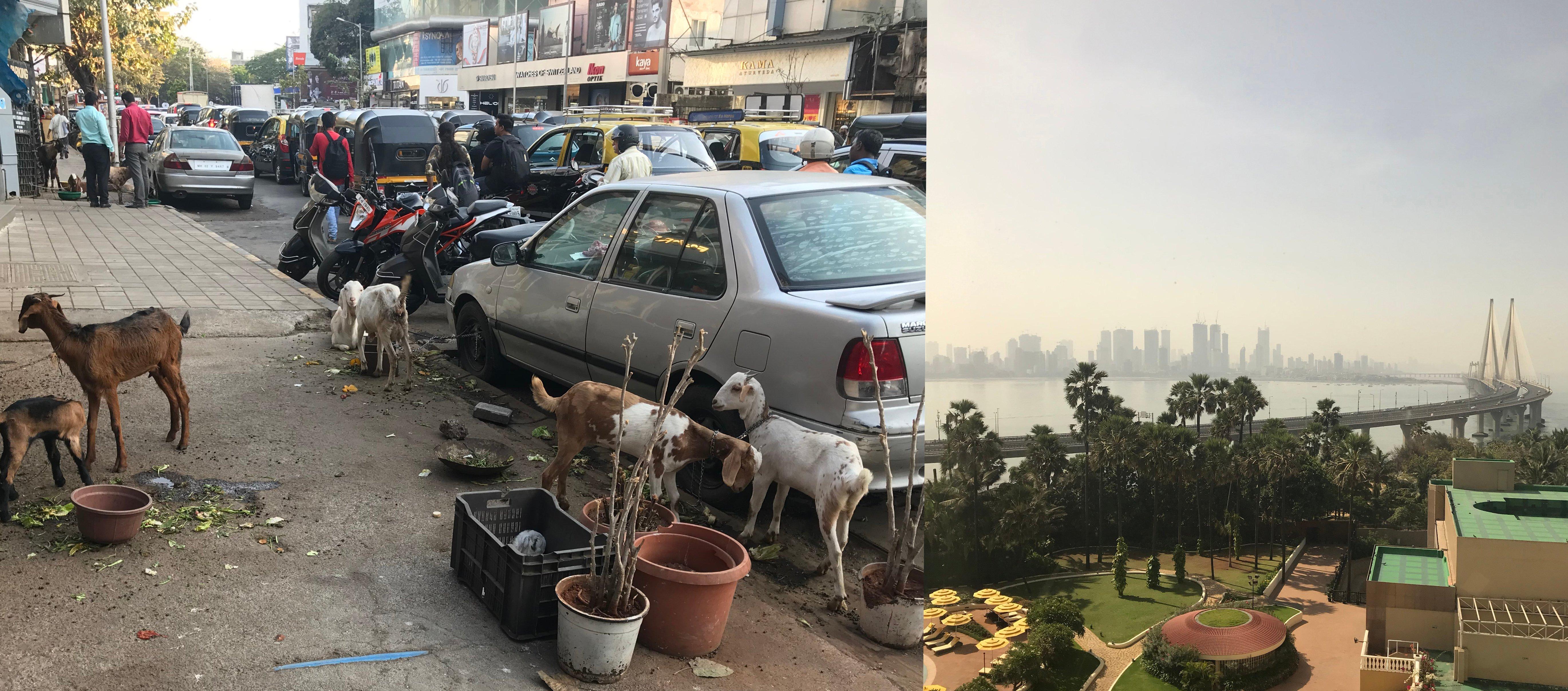 Indias contrasts - horizontal