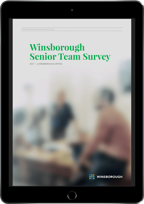 WINS_Senior_Team_Survey_Report_eBook-ipad